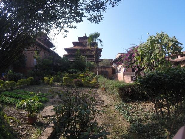 Gardens at Patan Durbar Square, Kathmandu, Nepal 2015