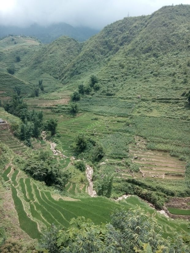 Rice Terraces of Sapa in Northern Vietnam