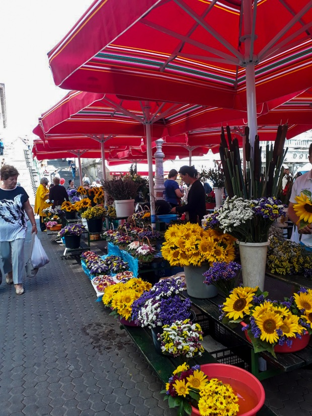 Flowers at Dolac Market, Zagreb, Croatia