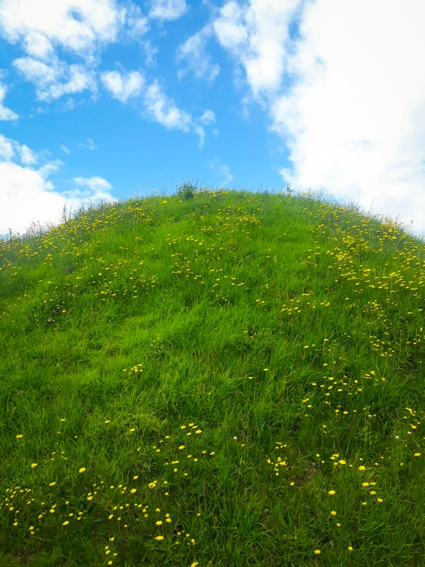 Fairy Hill, buttercups grass and blue skies, Co. Meath, Ireland