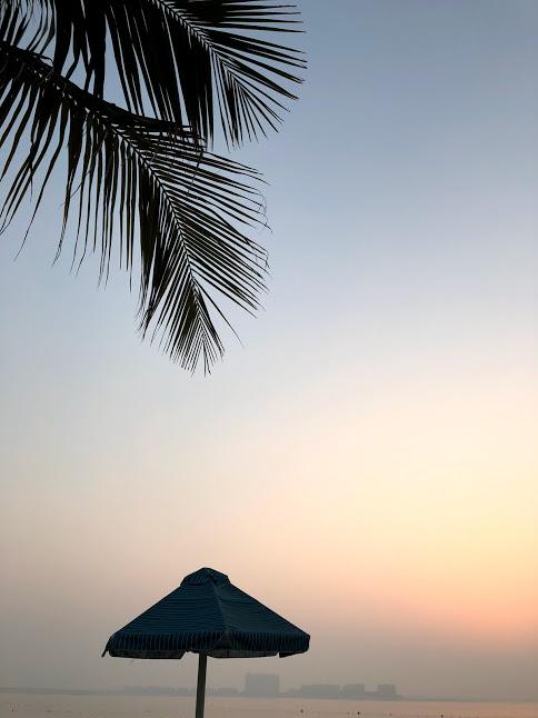 Sunset and Palm Trees at beach Ras Al Khaimah, Dubai, United Arab Emirates